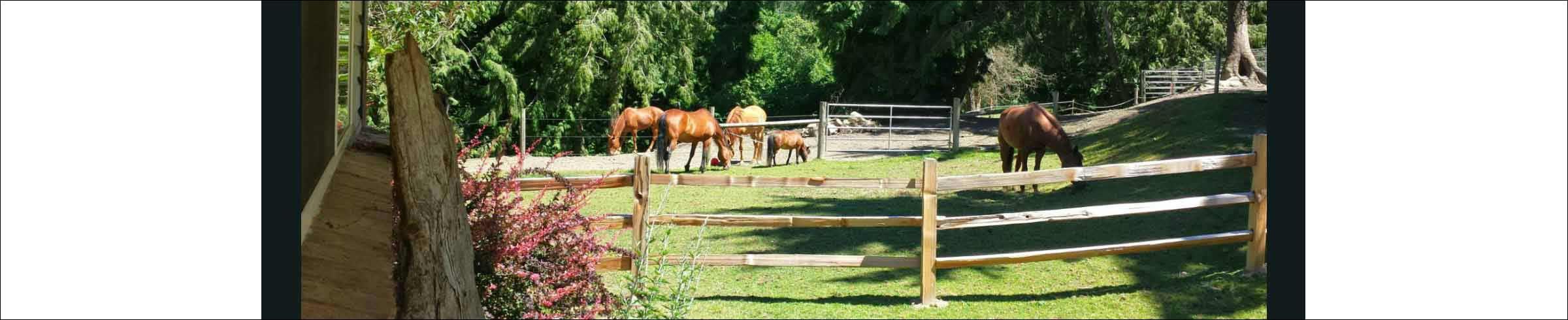Pasture Masthead