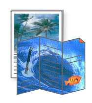 2-Sided Digital Color, Tri-folded Brochures)