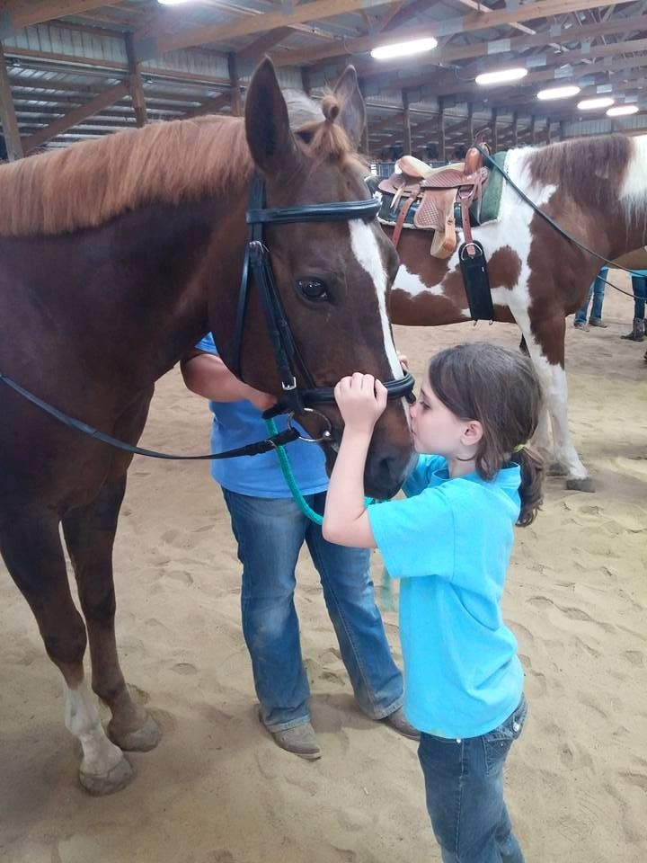Pony Pals Summer Camp