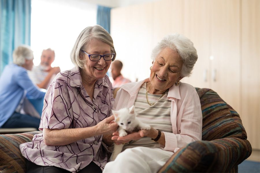 Two female older adults sitting on couch in the common area of an assisted living facility, one of them is holding a white kitten