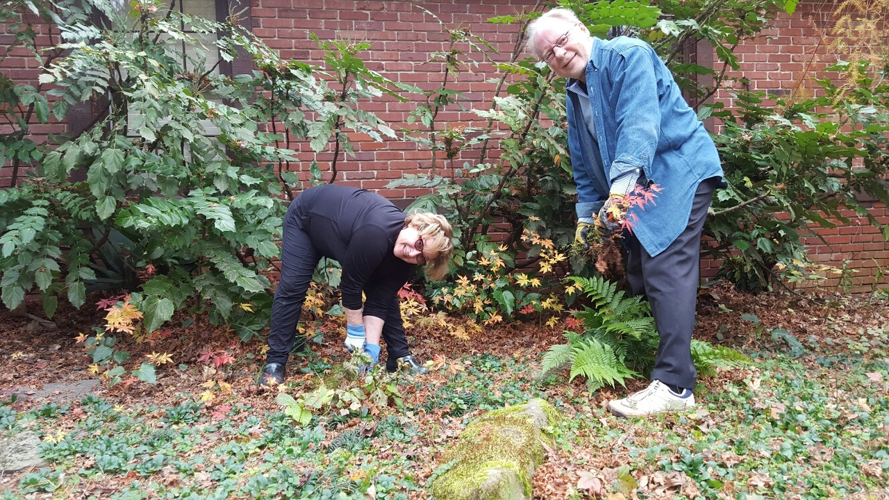 Harold and Janis Kirtz with their Japanese maple