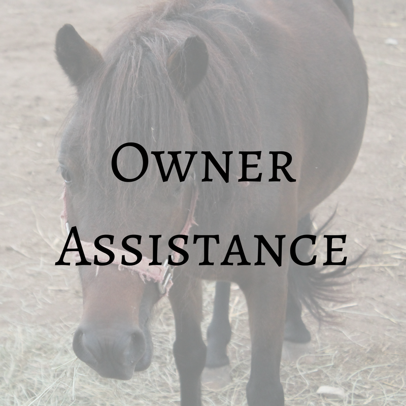 Owner Assistance