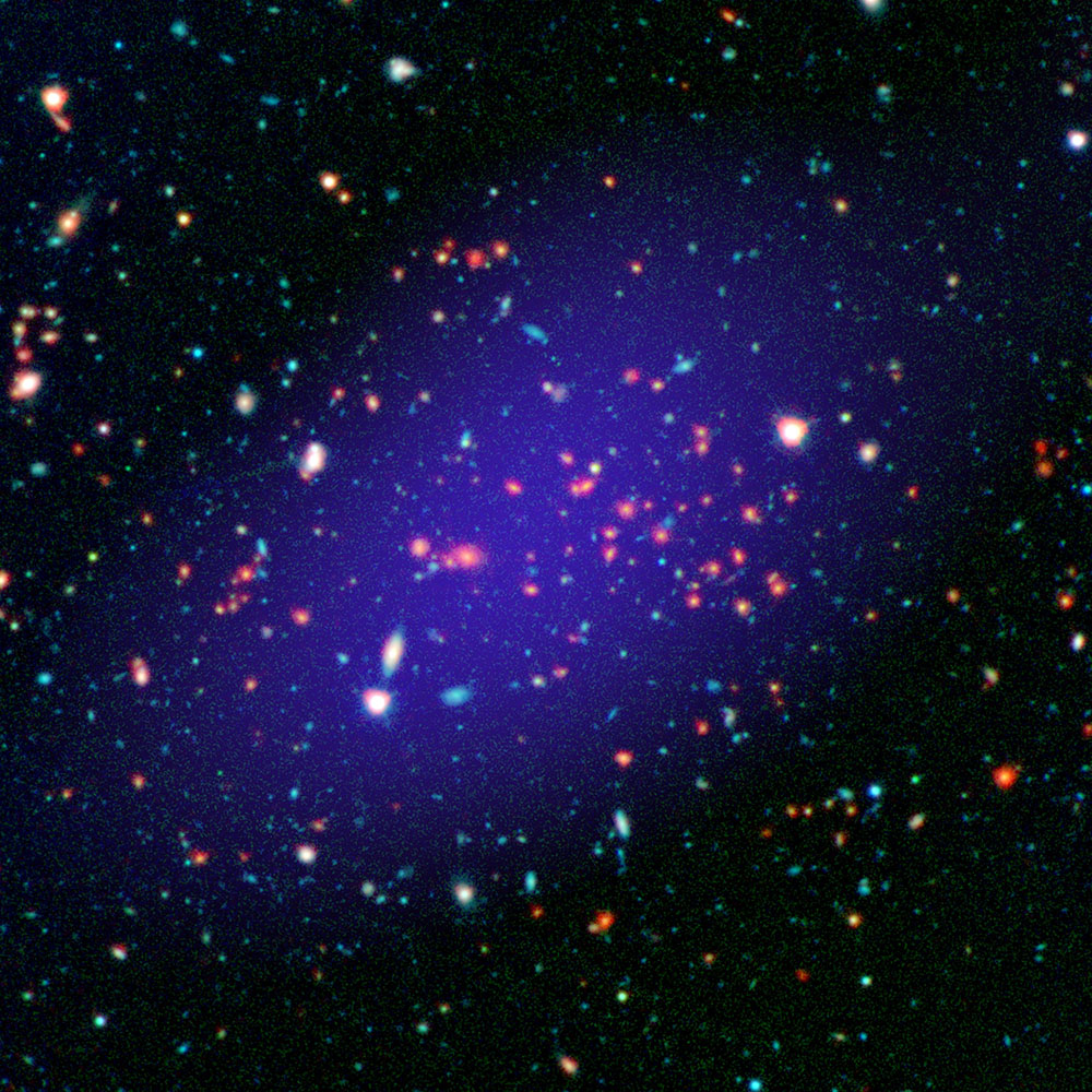 Why Do Galaxies in Large Clusters Age Prematurely?