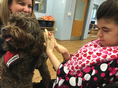 therapeutic animal visits