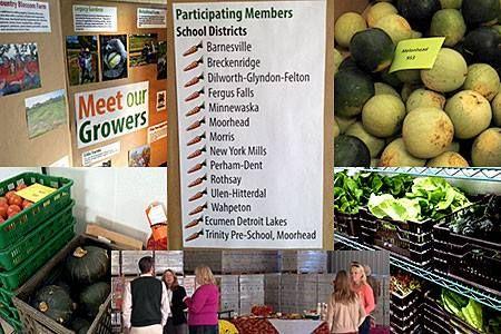 The Pilot Season of a Rural Food Hub