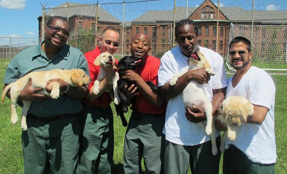 PRISON DOGS- International Film Festival