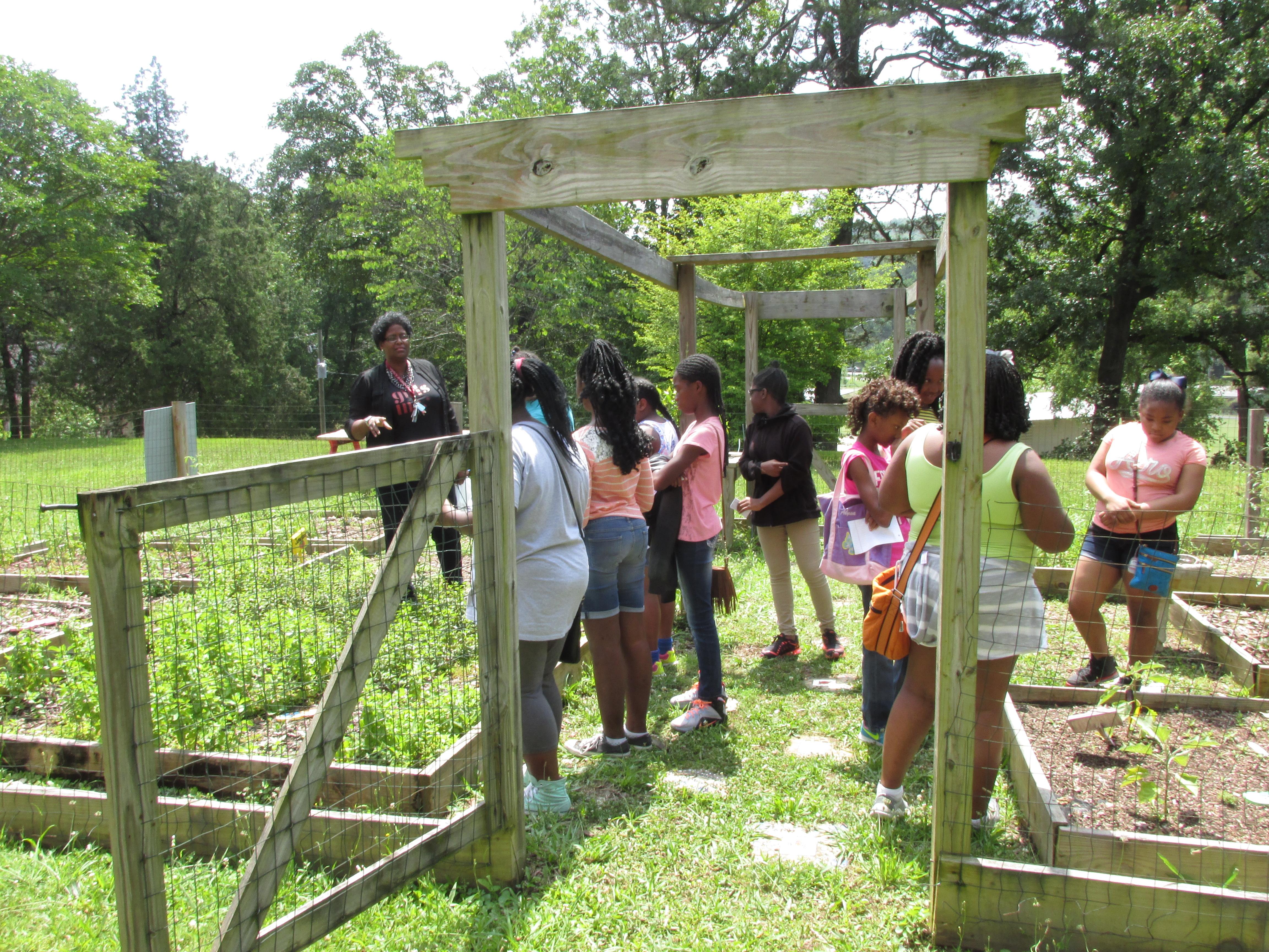 Healthy Living: Garden Growth