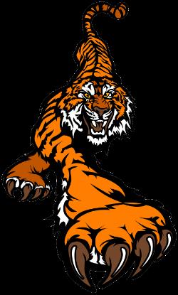 NBC Tiger