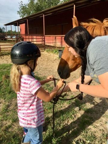 Beginner I & II Western Horse Camp