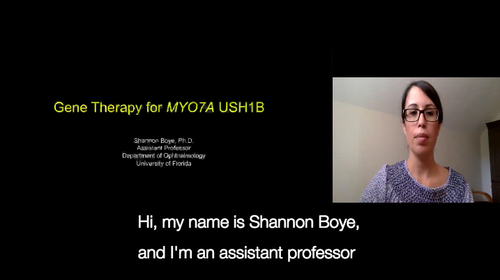 Gene Therapy for MYO7A USH1B