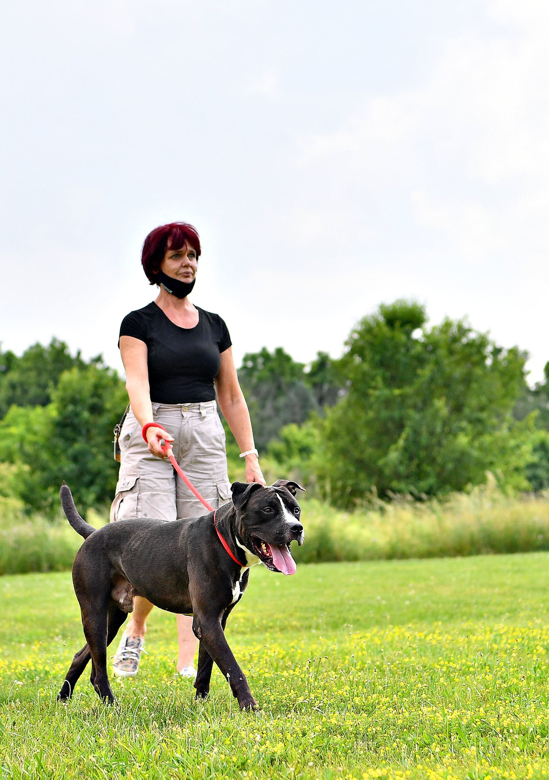 Clinic Corner: First Aid for Heat Stroke in Dogs