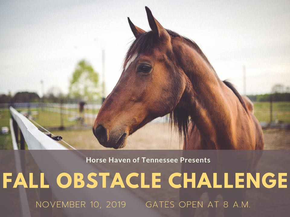 Fall Obstacle Challenge