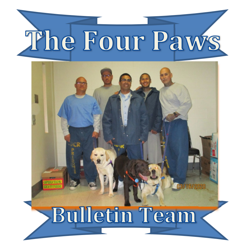 The Four Paws Bulletin - PVSP