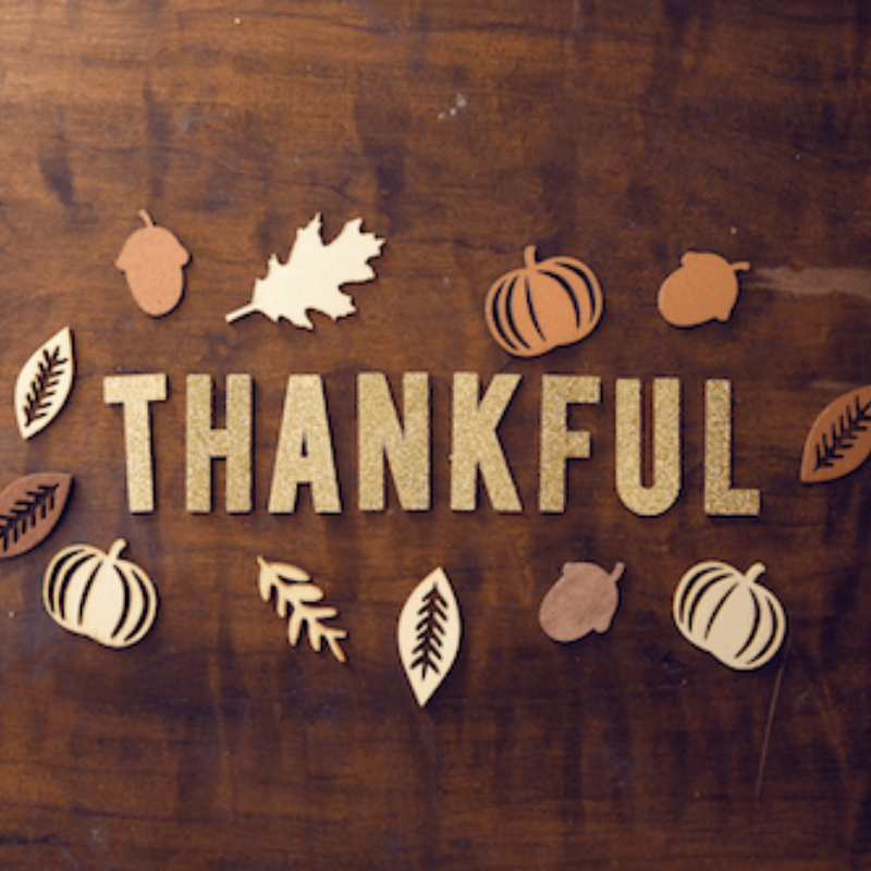 7 Things to Feel Thankful for This Thanksgiving