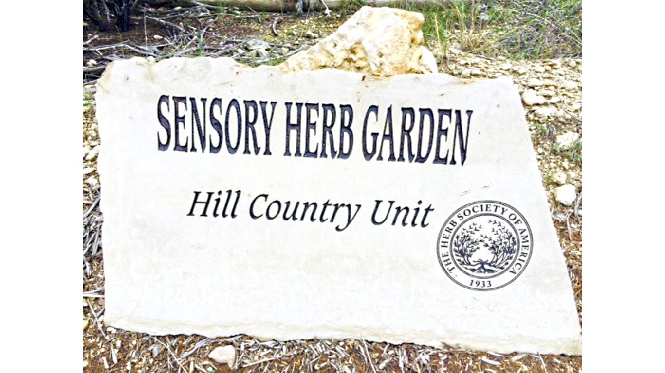 Sensory Garden 4