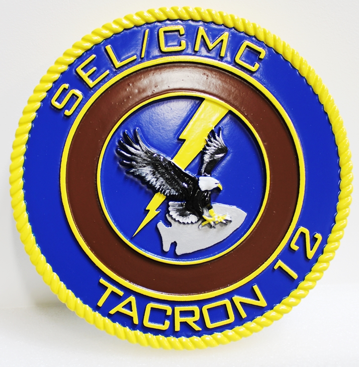 P-1665 - Carved  TACRON TWELVE SEL/CMC Plaque, 3-D Artist Painted with Eagle and Lightning as Artwork