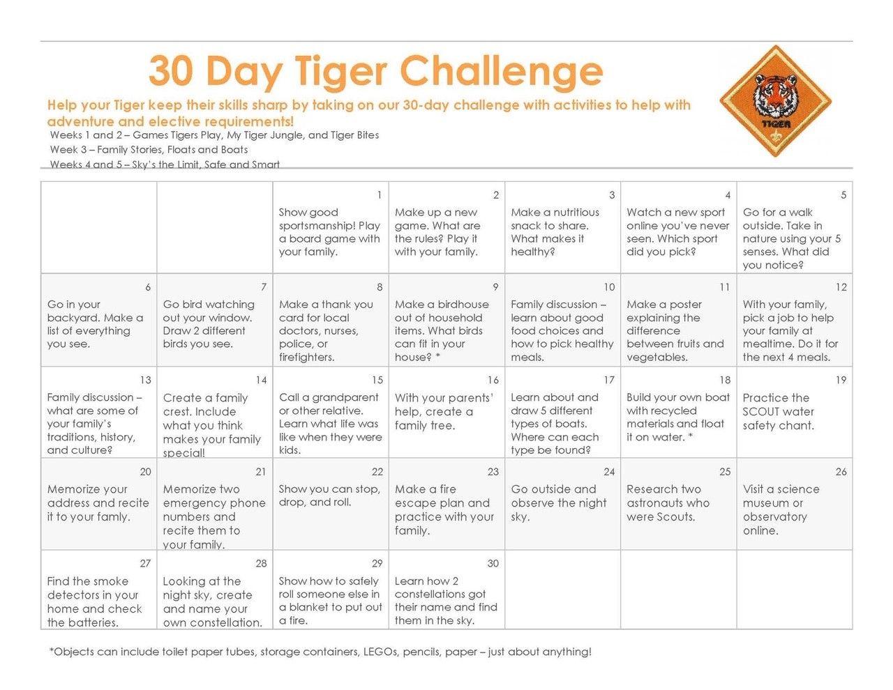 Tiger (1st Grade)