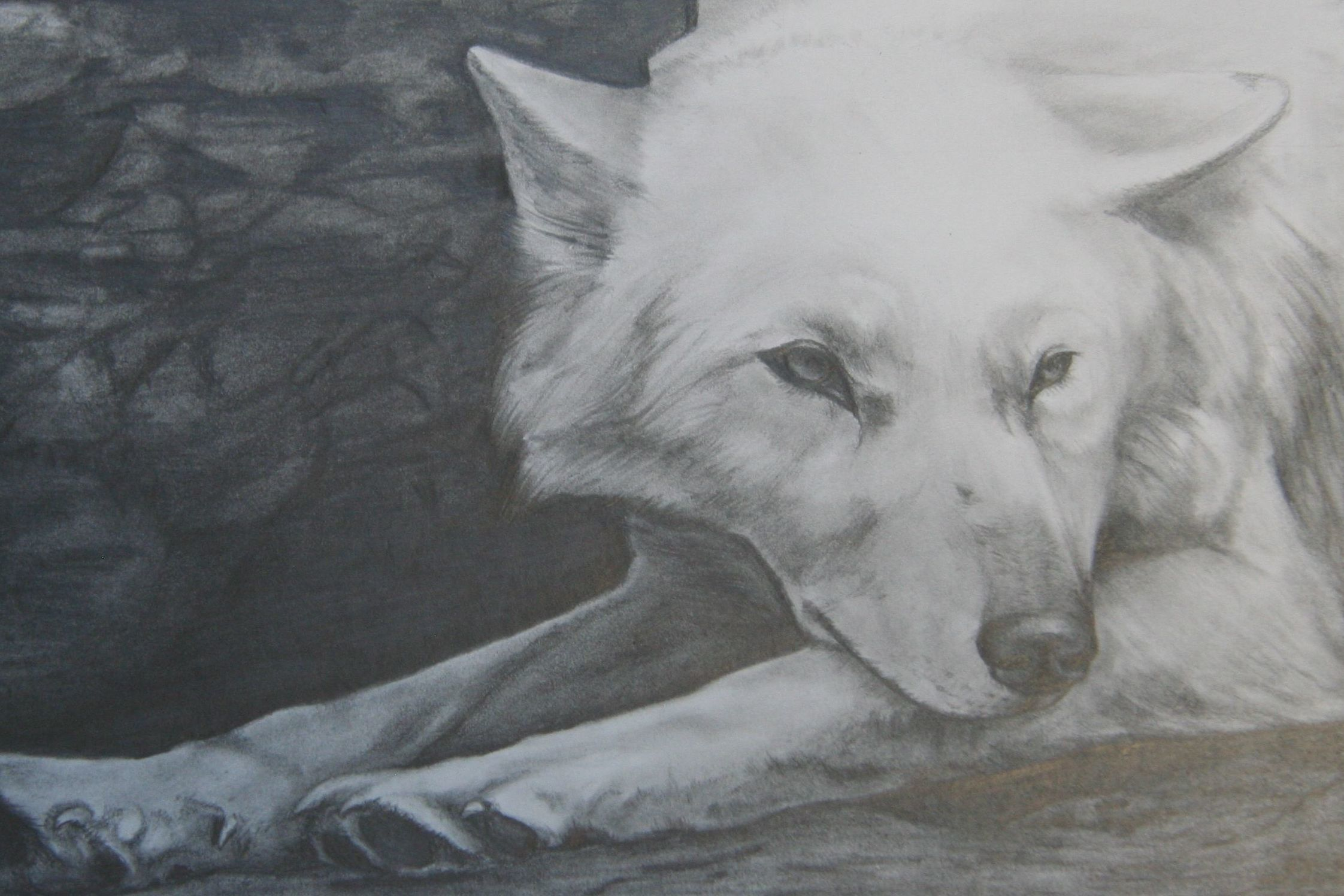 Wolf by Mara Hoyt