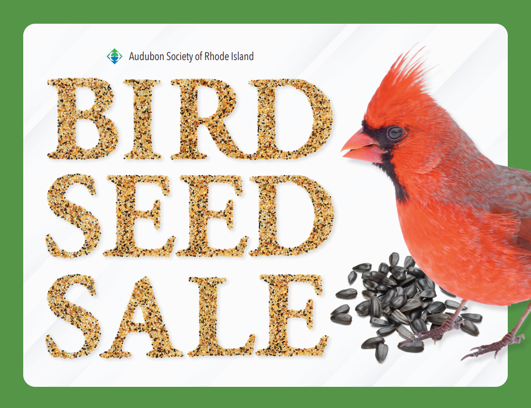 Bird Seed Sale (Extended to January 25)