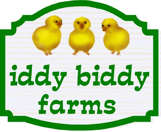 "O24460 - Design of Sign for ""Iddy Bitty Farms"" with Baby Chicks"