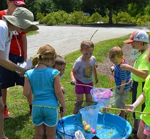 Summer Nature Camps - registration is underway!
