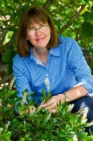 Protecting Bees and Pollinators with Kim Eierman