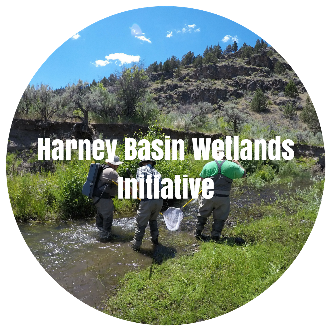 Harney Basin Wetlands Initiative