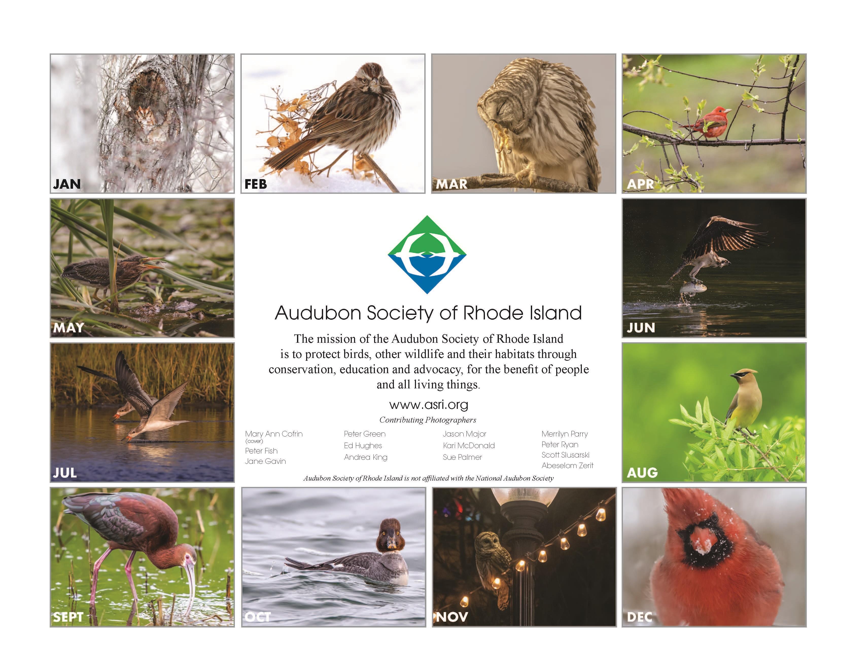 Audubon 2020 Calendar Preview