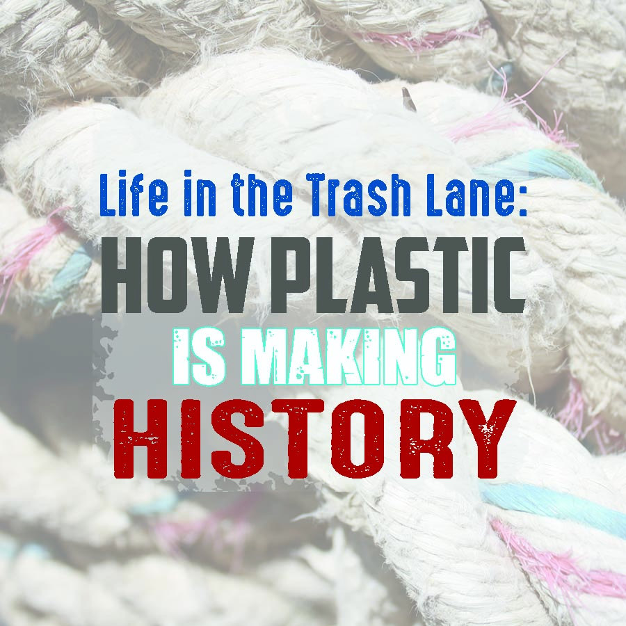 How Plastic is Making History + Simple Things You Can Do To Help