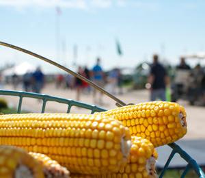 Largest Farm Show