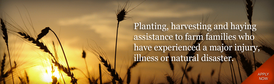 Planting, Harvesting, and Haying