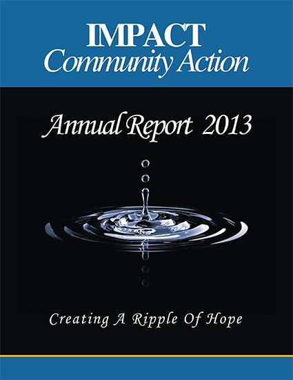 Review 2013 Annual Report
