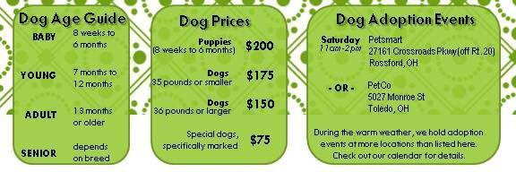 Dog prices 3-21-14