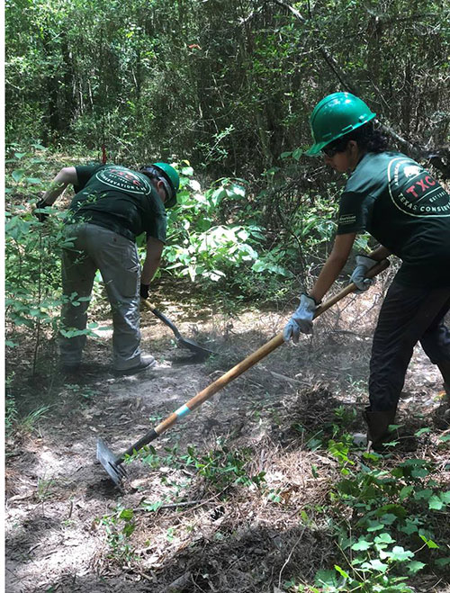 Houston Conservation Corps Works at Northern Sanctuaries