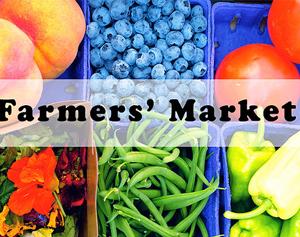 Farmer's Market Info Booth