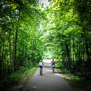 Michigan Trails 2 - 2021