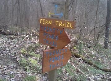 Trail Sign Eagle Scout Project (2012)