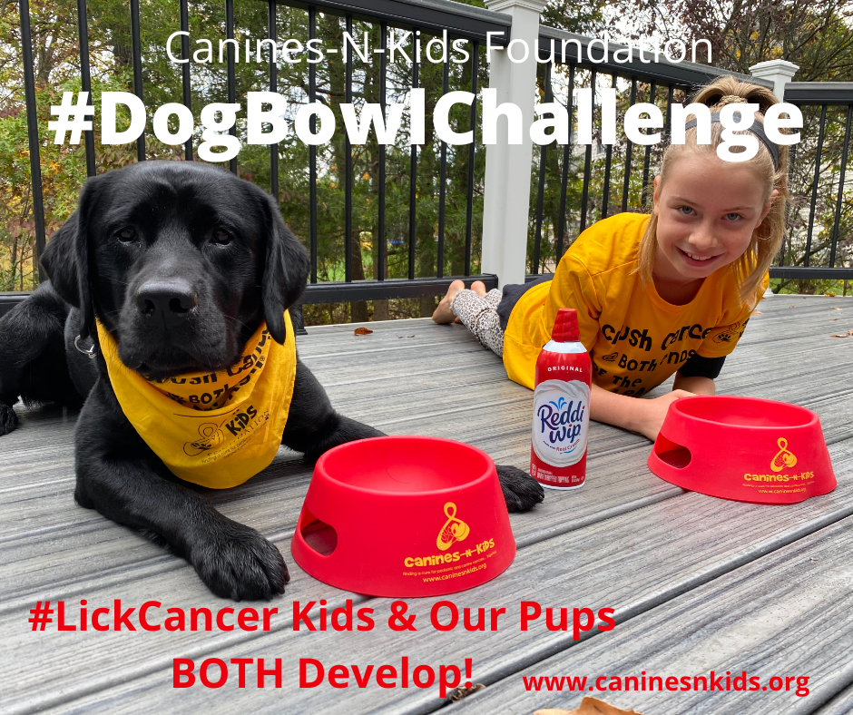 Canines-N-Kids Foundation Launches Viral Dog Bowl Challenge to Help #LickCancer