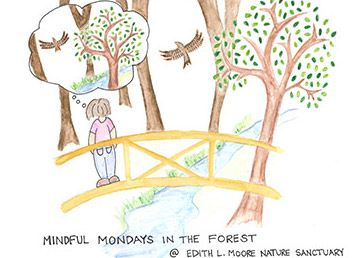 Mindful Monday In The Wood @ Edith L. Moore Nature Sanctuary | Houston | Texas | United States