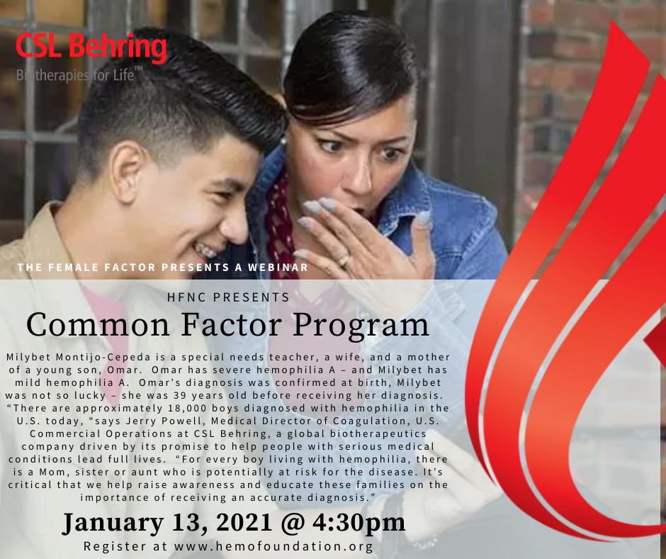 Common Factor Program