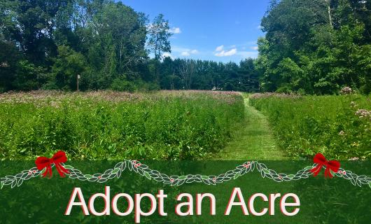 Adopt an Acre