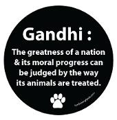 Ghandi- Round