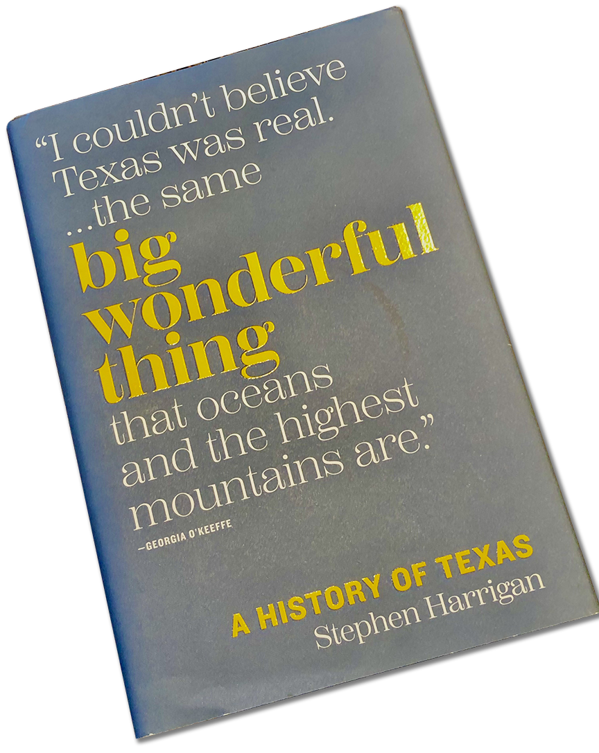 Cover of the book, BIG WONDERFUL THING, by Stephen Harrigan