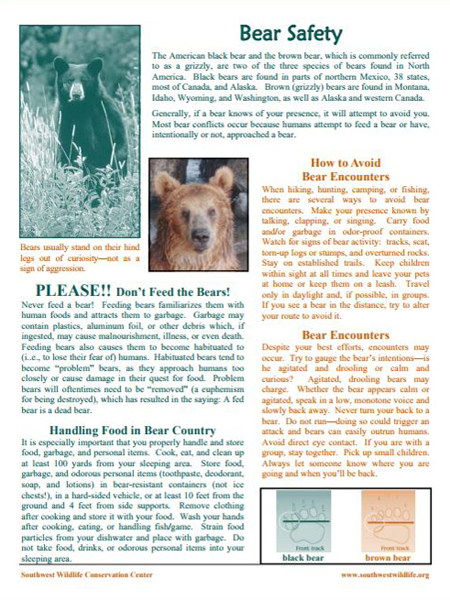 Bear Safety Sheet
