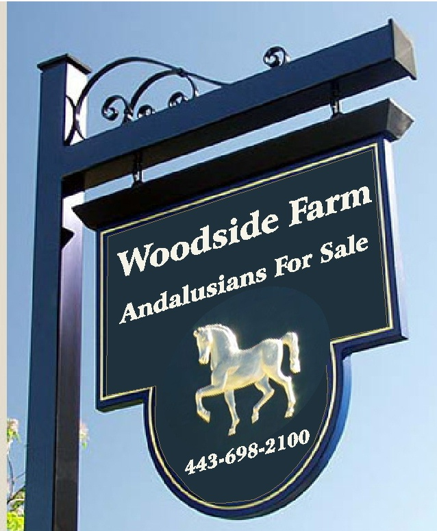 "P25005 - Carved HDU Sign ""Woodside Farm Andalusians For Sale"" with 3-D Image of Horse"