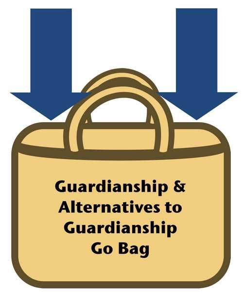 Guardianship & Alternatives Options Go Bag