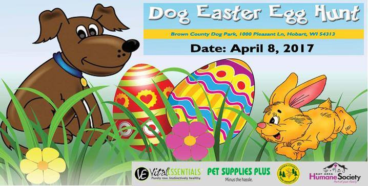 Dog Easter Egg Hunt!