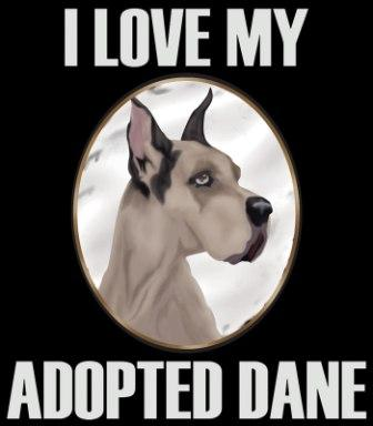 I love my adopted Dane - Medium