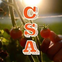 CSA and Food Access Landscape Analysis Report