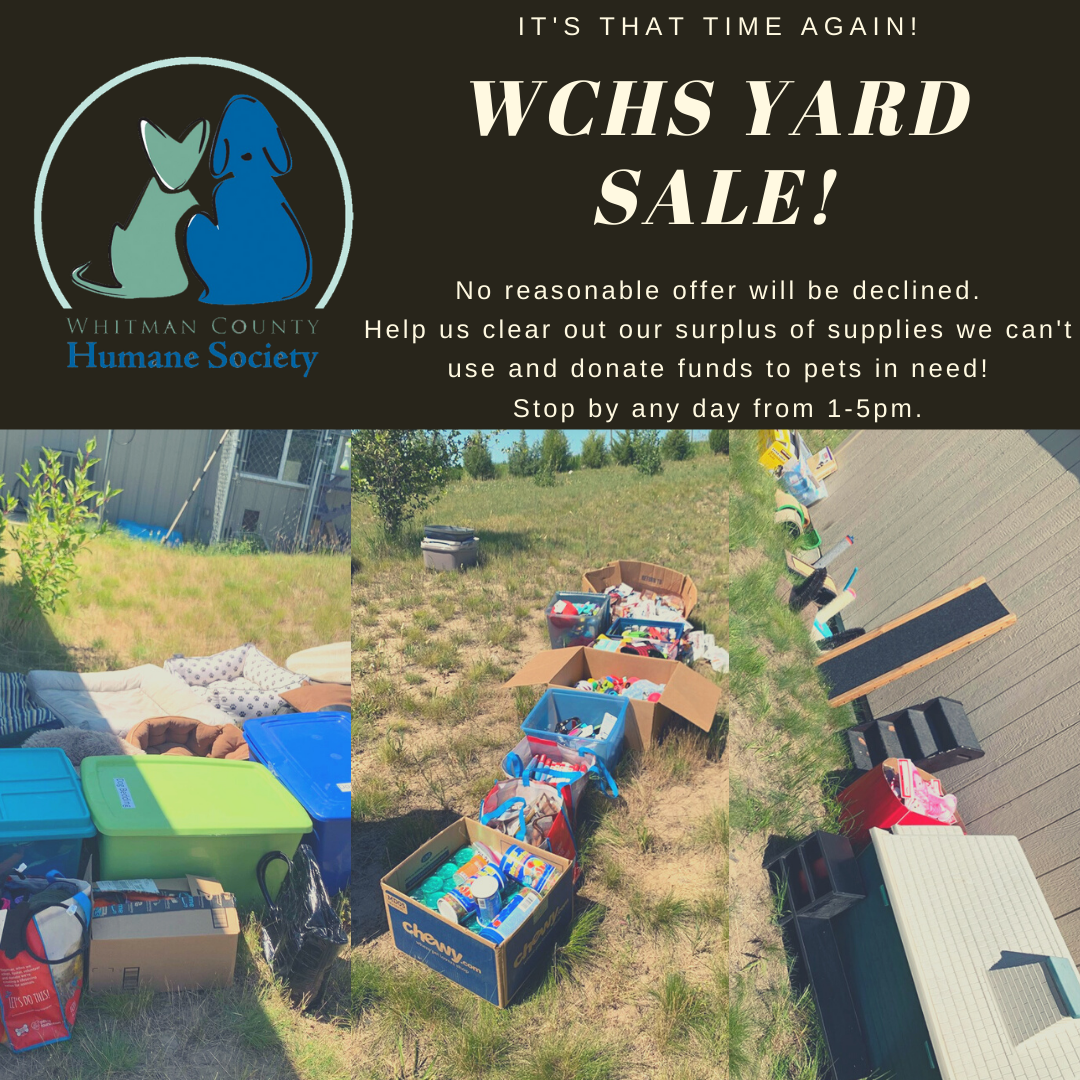 WCHS Yard Sale